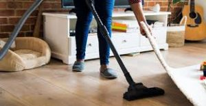 cleaning domestic